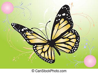 papillon, image, vecteur