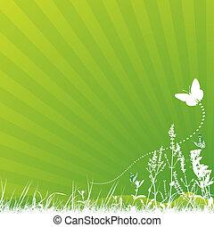 papillon, pré