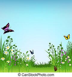 papillons, fleurir, pré