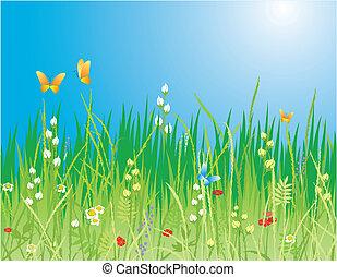 papillons, herbe, -, fleurs, vecteur, arrière-plan., &, printemps