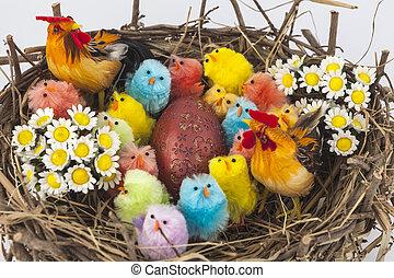 paques, poulets, coloré