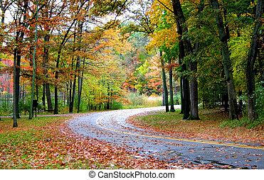 par, forêt, route