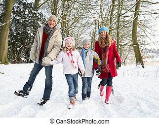 par, marche, pays boisé, famille, neigeux