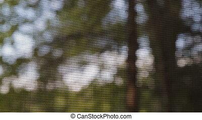 par, vue, bugscreen., arbres