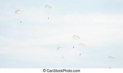 parachutes, voler, blanc, parachutistes, groupe, ciel