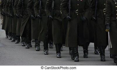 parade., militaire, -, hd, soldats