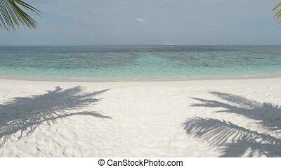 paradis, eaux, clair, maldives, plage, bleu, exotique