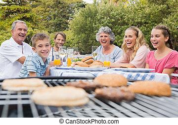 parc, barbecue, avoir, rire, ensemble, famille