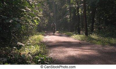 parc bicyclette, par, équitation, sun's, rays., homme