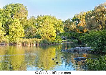 parc, central, new-york, étang