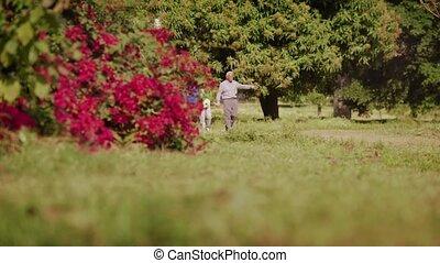 parc, garçon, marche, 5-grandpa, grand-maman
