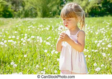 parc, heureux, enfant, pissenlit, souffler, dehors
