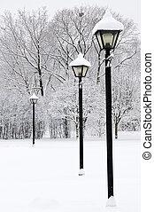 parc, hiver