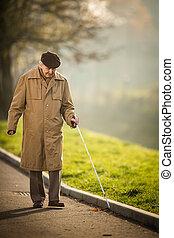 parc, homme, aveugle, promenade