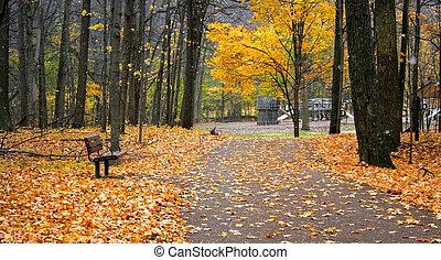 parc, manière, promenade
