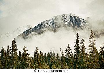 parc national, banff
