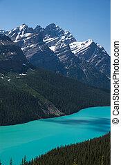 parc national, petyo, lac, banff