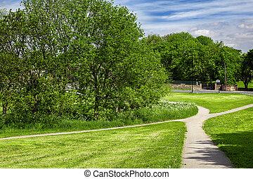 parc, vert, printemps