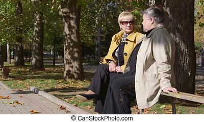 parc ville, banc, quelque chose, personne agee, discuter, femmes