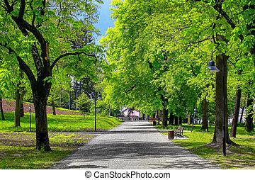parc ville, vert, ruelle