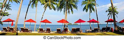 parfait, panorama, exotique, parapluies, plage, rouges