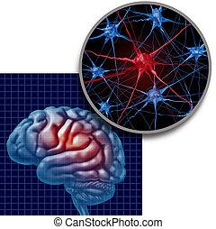 parkinson, concept, anatomie, cerveau