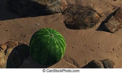 pastèque, grand, sable plage, juteux