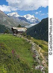 pastoral, paysage, alpin