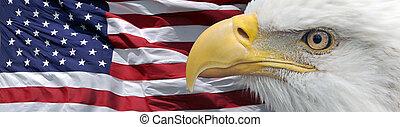 patriotique, aigle, bannière