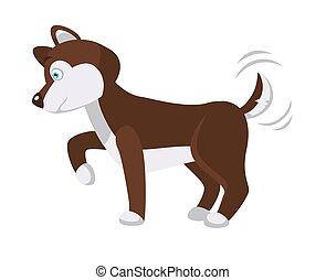 patte, pelucheux, chien, queue, vagues, husky, donne