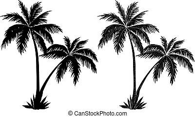 paume, silhouettes, arbres, noir