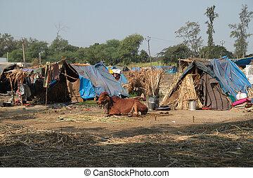 pauvre, habitations