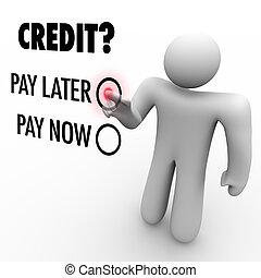 payer, later, -, crédit, vs, choisir, argent, maintenant, emprunt