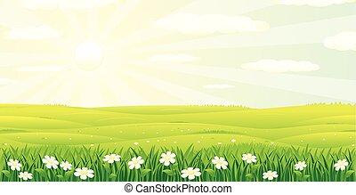 paysage., été, scénique, image, vecteur, jour