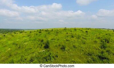 paysage., aérien, panorama, haystacks., arbres, automne, vert, vallée, vue
