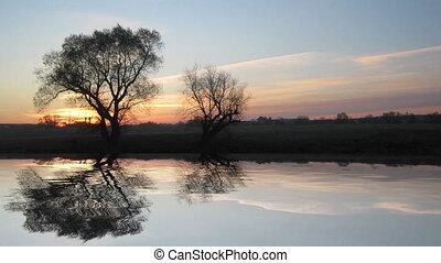paysage, arbre, lac, levers de soleil