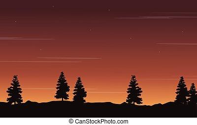 paysage, arbre, silhouette, coucher soleil