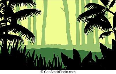 paysage arbre, silhouette, forêt, beauté