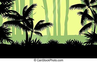 paysage arbre, silhouette, jungle, beauté
