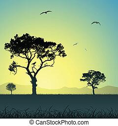 paysage, arbres