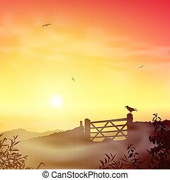 paysage brumeux, matin