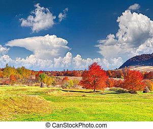 paysage, coloré, automne, montagnes