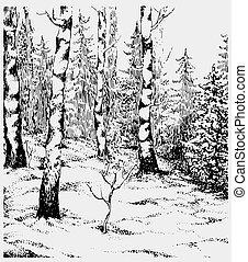 paysage., darwn, illustration, main, vecteur, noir, blanc