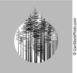 paysage, forêt