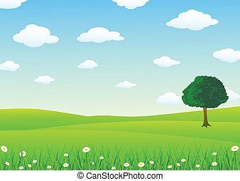 paysage, herbe