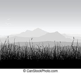 paysage, herbe, montagnes