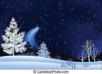 paysage, hiver, illustration