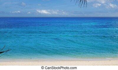 paysage, inclinez, exotique, surprenant, mer