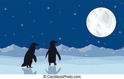 paysage, manchots, silhouette, neige, lune