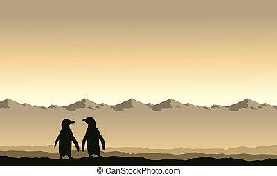paysage, montagne, silhouette, fond, manchots